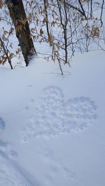 Heart in the snow in Vermont.